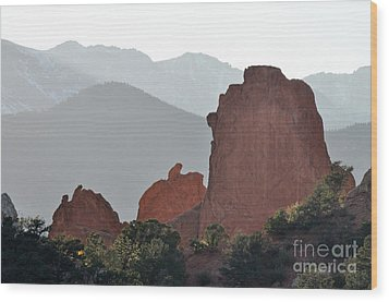 Wood Print featuring the photograph Garden Of The Gods by Cheryl McClure