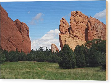 Wood Print featuring the photograph Garden Of The Gods by David Pantuso
