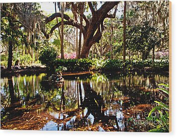Garden Reflections Wood Print by Bob and Nancy Kendrick