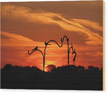 Wood Print featuring the photograph Garden Sunrise by Tina M Wenger