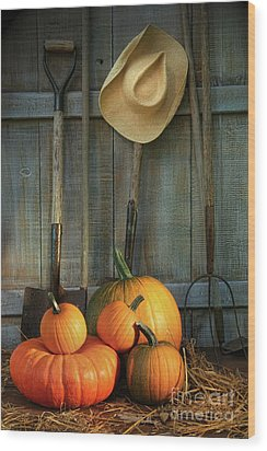 Garden Tools In Shed With Pumpkins Wood Print by Sandra Cunningham