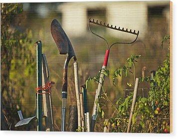 Gardening Tools Wood Print by John Greim