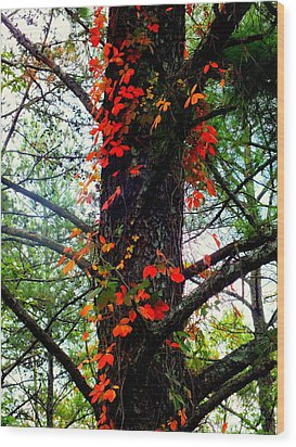 Garland Of Autumn Wood Print by Karen Wiles
