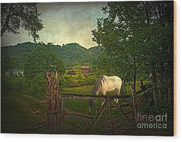 Gate To The Past Wood Print by Lianne Schneider