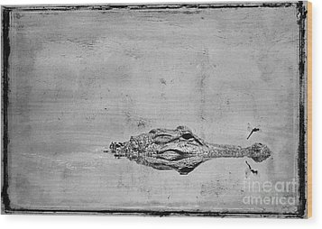 Gator And Dragonfly Wood Print by Jim Wright
