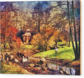 Gazebo In The Park Wood Print by Jai Johnson