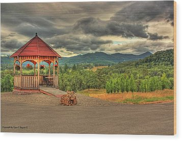 Wood Print featuring the photograph Gazebo In The Storm by Tyra  OBryant