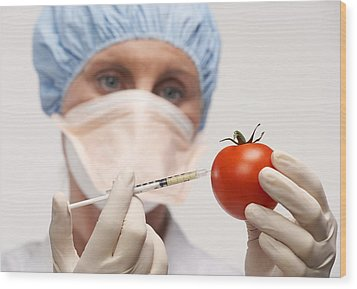 Genetically Engineered Tomato Wood Print by Mark Sykes