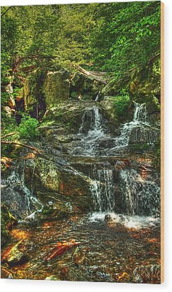 Gentle Falls Wood Print by Dan Stone