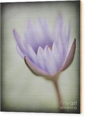 Gentle Praise Wood Print by Linde Townsend