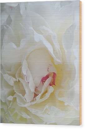Gently Unfolding Wood Print by Shirley Sirois