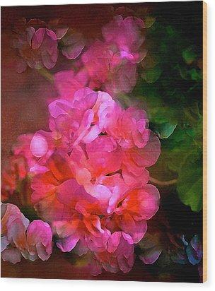 Geranium 9 Wood Print by Pamela Cooper