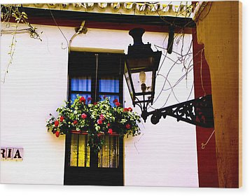 Wood Print featuring the photograph Geraniums And Light by Rick Bragan