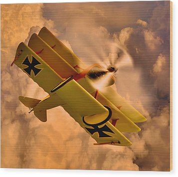 German Airplane Wood Print by Gennadiy Golovskoy