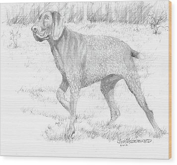 Wood Print featuring the drawing German Shorthaired Pointer by Jim Hubbard