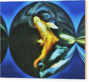 Ghost Koi Wood Print by Don Mann