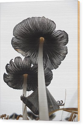Giant Mushrooms In The Sky Wood Print