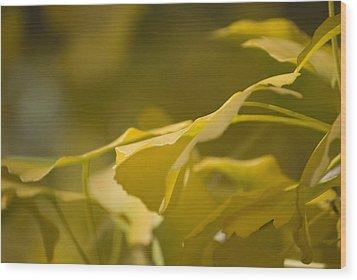 Ginko 2 Wood Print