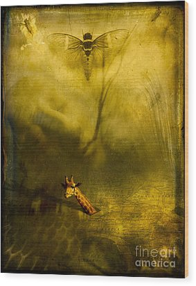 Giraffe And The Heart Of Darkness Wood Print by Paul Grand