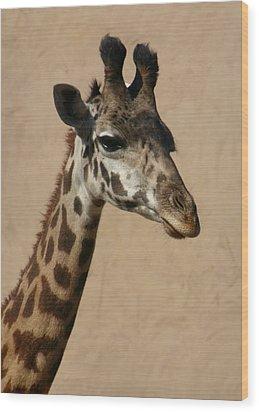 Giraffe Wood Print by Kelly Hazel