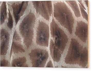 Giraffe's Hide Wood Print by John Foxx