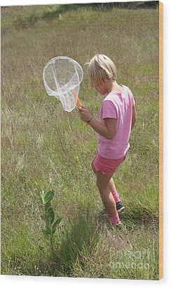 Girl Collecting Insects In A Meadow Wood Print by Ted Kinsman