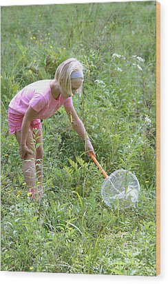 Girl Collects Insects In A Meadow Wood Print by Ted Kinsman