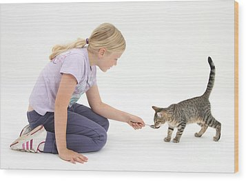 Girl Feeding Kitten From A Spoon Wood Print by Mark Taylor
