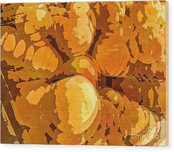 Give Peach A Chance Wood Print by Jim Moore