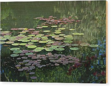 Giverny Lily Pads Wood Print
