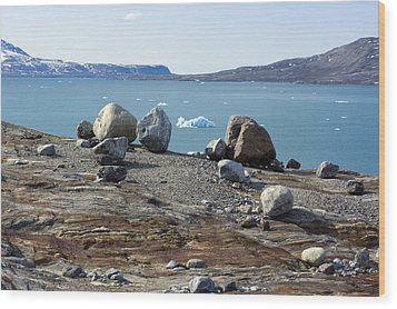Glacial Erratics And Fjord Wood Print by Dr Juerg Alean