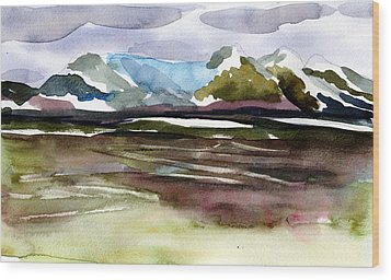 Glacier Near Juneau Wood Print by Mindy Newman
