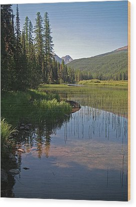 Glacier Slough Swan River Montana Wood Print by Laurie Stewart