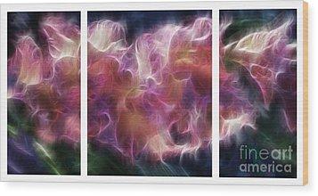 Gladiola Nebula Triptych Wood Print by Peter Piatt