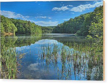 Glassy Waters Wood Print by Adam Jewell
