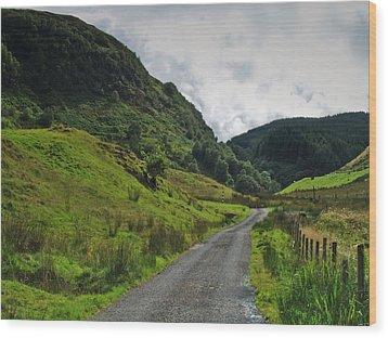Glen Feochan Wood Print