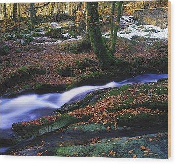 Glenmacnass Waterfall, Co Wicklow Wood Print by The Irish Image Collection