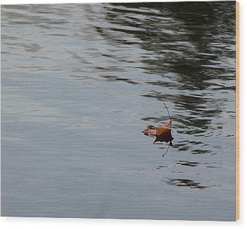 Gliding Across The Pond Wood Print by LeeAnn McLaneGoetz McLaneGoetzStudioLLCcom
