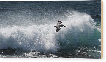 Wood Print featuring the photograph Gliding Pelican by Michael Rock