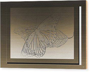 Glimmer Butterfly Collection Wood Print by Debra     Vatalaro