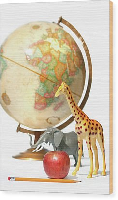 Globe With Toys Animals On White Wood Print by Sandra Cunningham