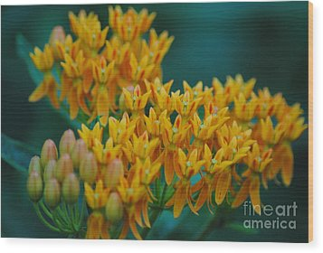 Glorious Colors Wood Print by Tamera James