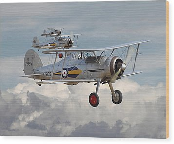 Gloster Gladiator Wood Print by Pat Speirs