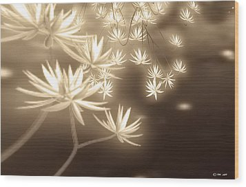 Glowing Flower Fractals Wood Print by Yvon van der Wijk