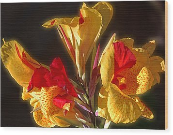 Wood Print featuring the photograph Glowing Iris by DigiArt Diaries by Vicky B Fuller