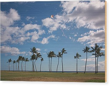 Wood Print featuring the photograph Go Fly A Kite by Craig Wood