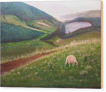 Goat On Welsh Mountain Wood Print by Malcolm Clark