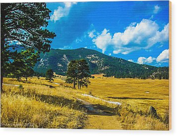 Wood Print featuring the photograph God's Country by Shannon Harrington