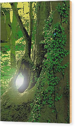 Wood Print featuring the photograph God's Eye View by Tim Ernst