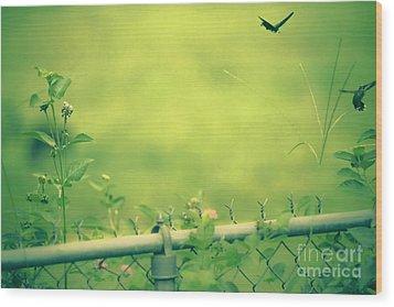 God's Love  Series One Wood Print